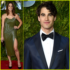 Darren Criss Hits Up the Tony Awards 2015 with Ashley Greene!