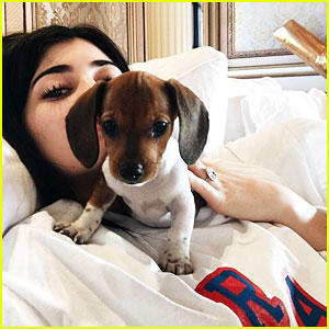 Kylie Jenner Got a New Dog for 19th Birthday!