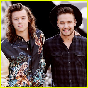 Liam Payne Wouldn't Leave His Son Bear With Harry Styles - Find Out Why!