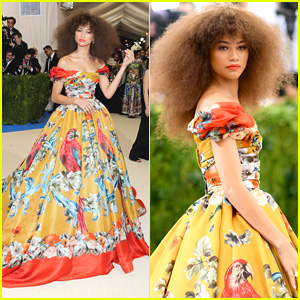 Zendaya's Met Gala 2017 Look is Perfection!