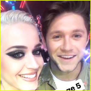 Katy Perry Calls Niall Horan a 'Stage 5 Clinger' on Instagram Stories