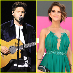 Niall Horan Will Collaborate With Maren Morris on New Song 'Seeing Blind'