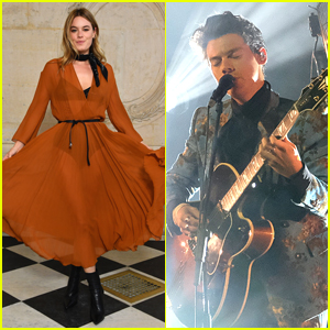 Harry Styles Looks To Be Officially Dating Victoria's Secret Model Camille Rowe