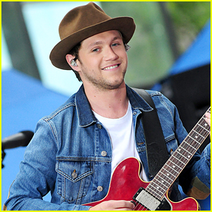Niall Horan Doesn't Think He'll Ever Reach One Direction's Height of Fame