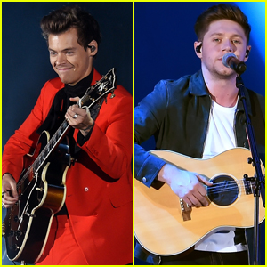 Harry Styles & Niall Horan Reunite at We Can Survive Concert in LA!