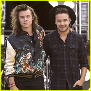 Liam Payne Opens Up About His Emotional Reunion with Harry Styles