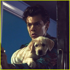 Harry Styles Debuts 'Kiwi' Music Video - Watch Now!