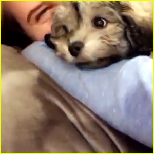 Veronica Dunne Adopted The Cutest Little Puppy Ever!
