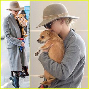 Jennifer Lawrence & Her Pup Pippi Catch a Flight at JFK