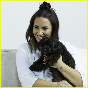 Demi Lovato Explains Why She Posted Those Cellulite Pictures on Her Instagram!