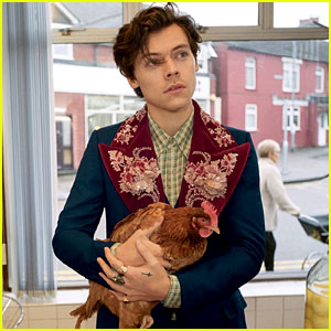 Harry Styles' Gucci Campaign Photos Are Here!