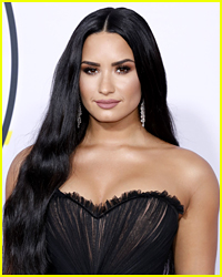 Police Shut Down Plans To Rob Demi Lovato's House While She Is In Rehab