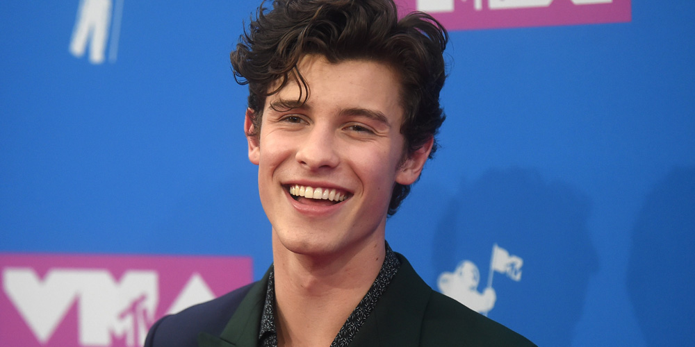 Shawn Mendes Thought Everyone Knew Niall Horan Amp Hailee