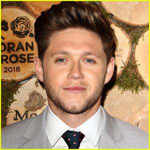 Niall Horan Reveals He Had Sinus Surgery