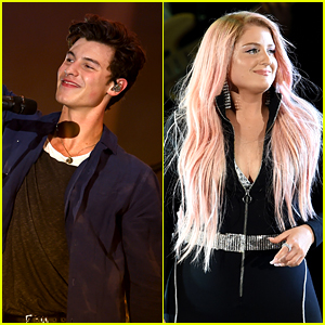 Shawn Mendes & Meghan Trainor Perform at 'We Can Survive' to Fight Breast Cancer