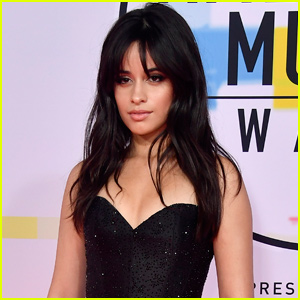 According To This Singer, Camila Cabello Wasn't Nice At All