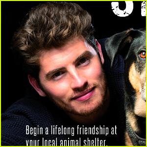Gregg Sulkin Poses With a Cute Dog in Pet Adoption PETA Campaign!