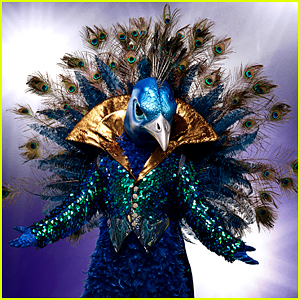 Get a Look at the New Costumes For 'The Masked Singer' Season 2!
