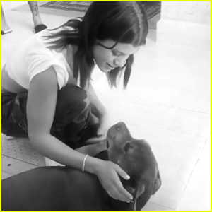 Sofia Richie Mourns the Death of Her Beloved Dog Jake