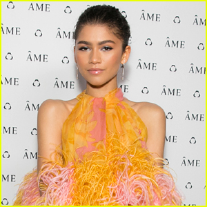 Zendaya Updates Fans With Funny Videos After Getting Her Wisdom Teeth Out