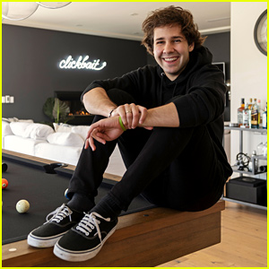 David Dobrik's Home Includes a Flamethrower, Stunning View, & More (Video)