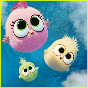 Angry Birds 2′ Debuts Adorable Hatchlings Clip – Watch Here