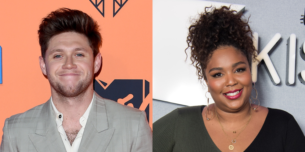 Are Niall Horan & Lizzo Flirting With Each Other On Social Media? - Just Jared Jr.