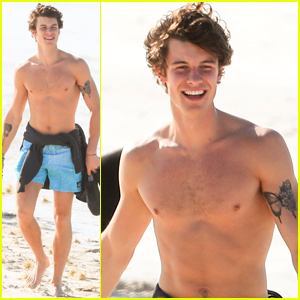 Shawn Mendes Soaks Up the Sun While Shirtless at the Beach!
