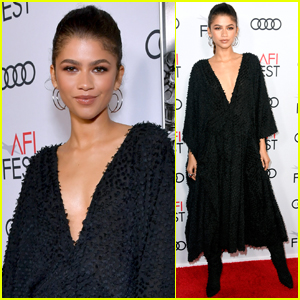 Zendaya Looks So Stunning at 'Queen & Slim' Premiere!