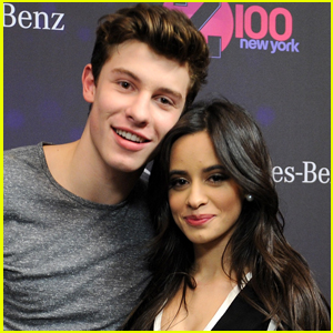 Shawn Mendes Says Quarantining with Camila Cabello Has Been 'Nice'