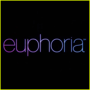 Zendaya Reveals 2 New Episodes of 'Euphoria' Are Coming Before Season 2!