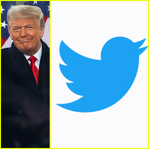 Celebs React To Twitter 'Permanently Suspending' Donald Trump's Account