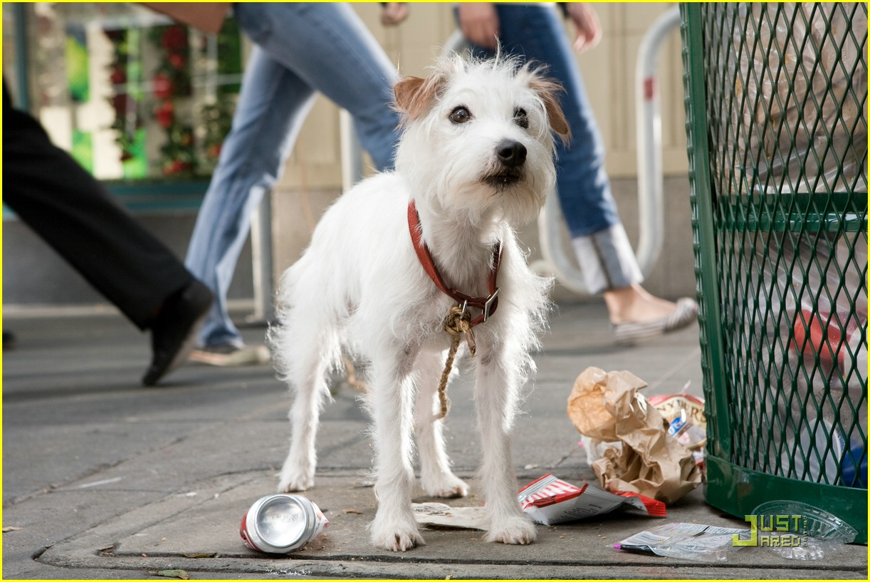 hotel for dogs movie stills 01