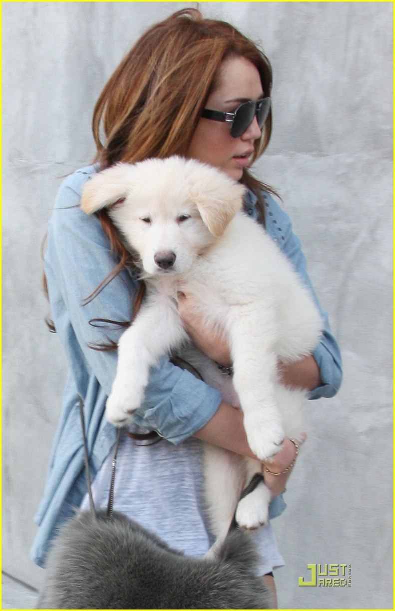 miley cyrus maxfield marvelous07