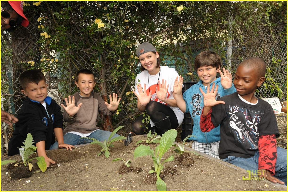daniella monet create good gardening 10
