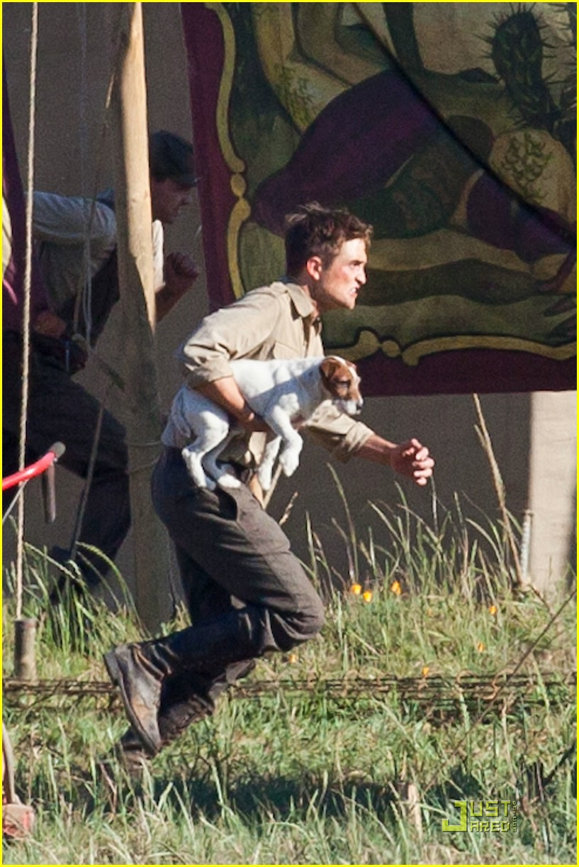 robert pattinson puppy elephants 07