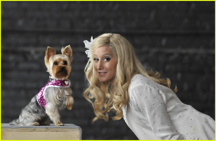 ashley tisdale sharpay dogs 20