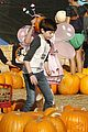 Cook-pumpkin mason cook pumpkin patch 23