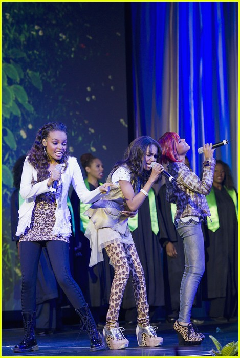 china mcclain sisters rise chimpanzee 11