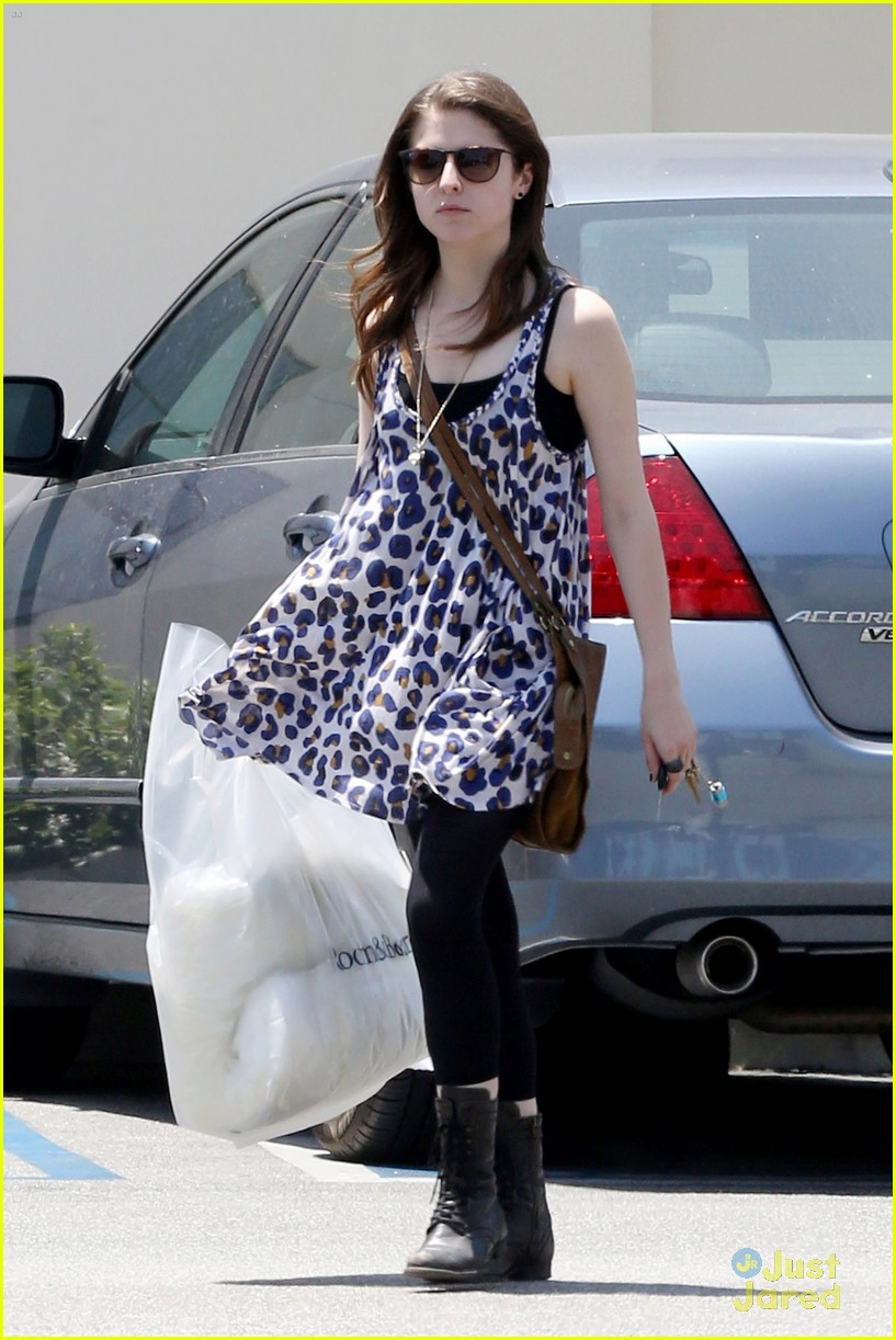 anna kendrick home decorator 03