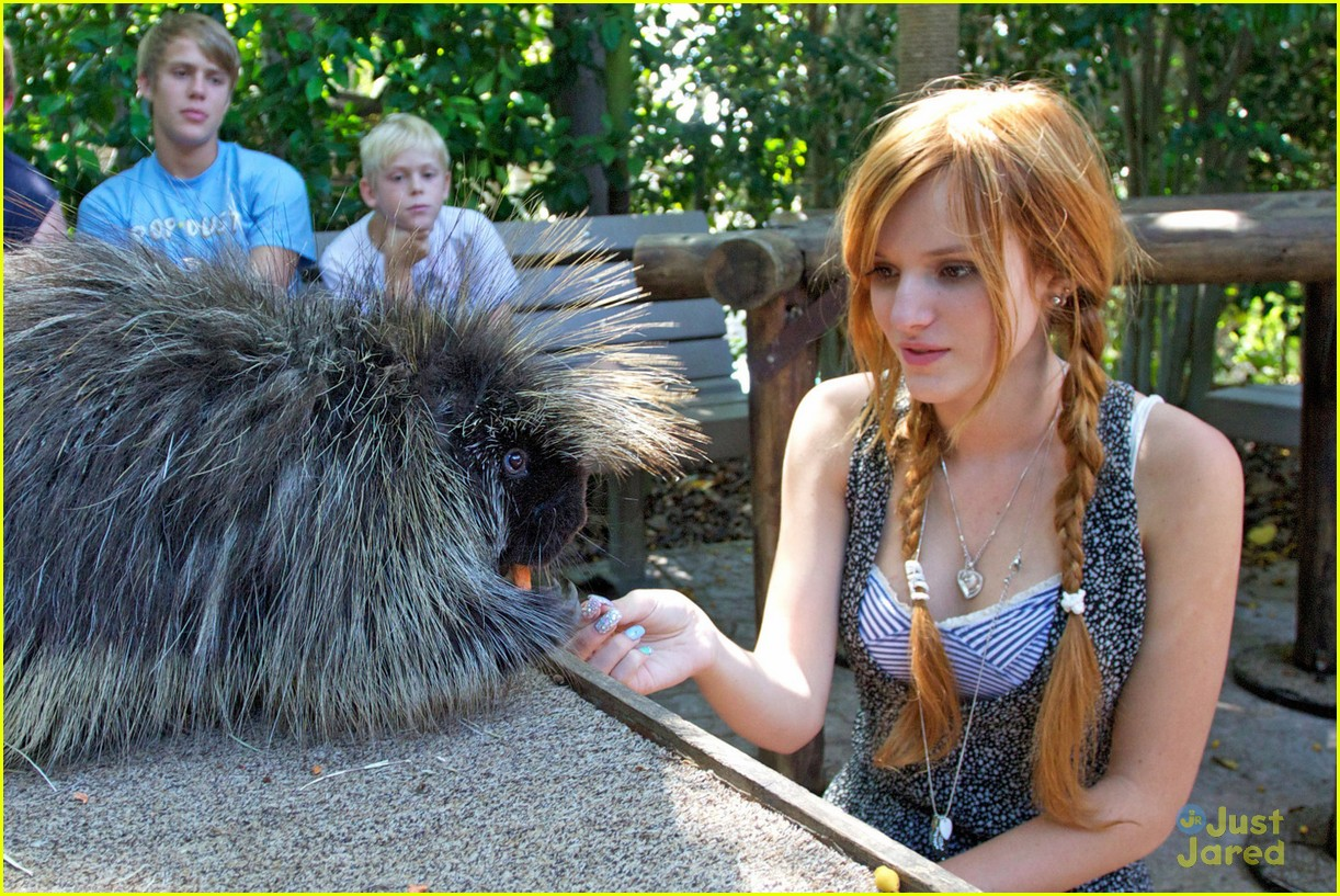 bella thorne san diego zoo 02