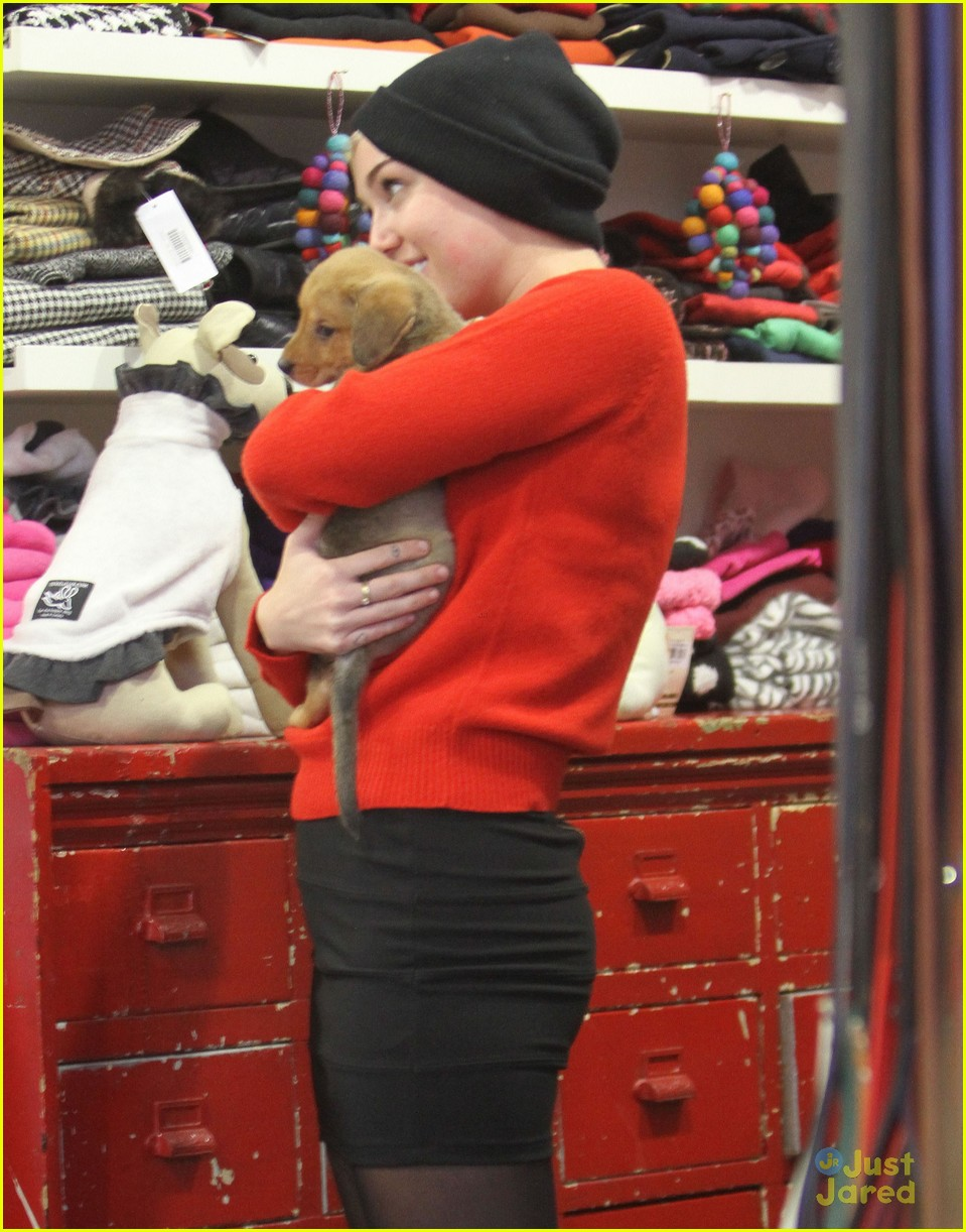miley cyrus adopts new pup 02