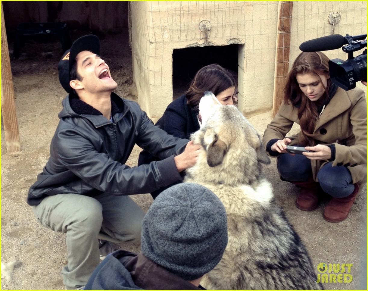 tyler posey real wolf teen wolf set 01