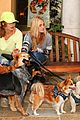 Michalka-dogs aj aly michalka dog day out 10