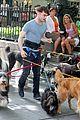 Dan-dog daniel radcliffe dog walker trainwreck nyc set 05
