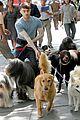 Dan-dog daniel radcliffe dog walker trainwreck nyc set 31