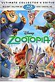 Zootopia-dvd zootopia bluray out june pics info 01