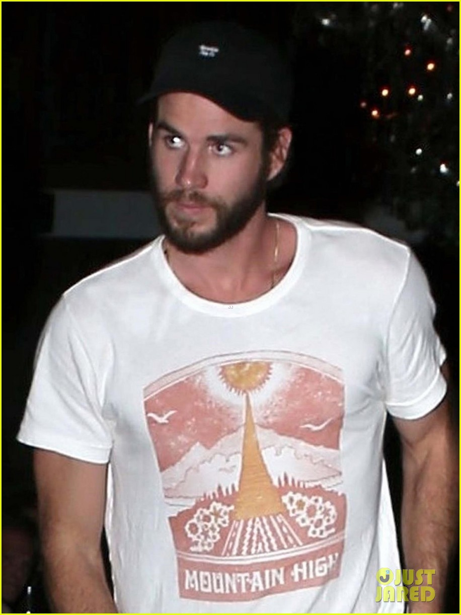 liam chris and luke hemsworth grab dinner in santa monica2 01