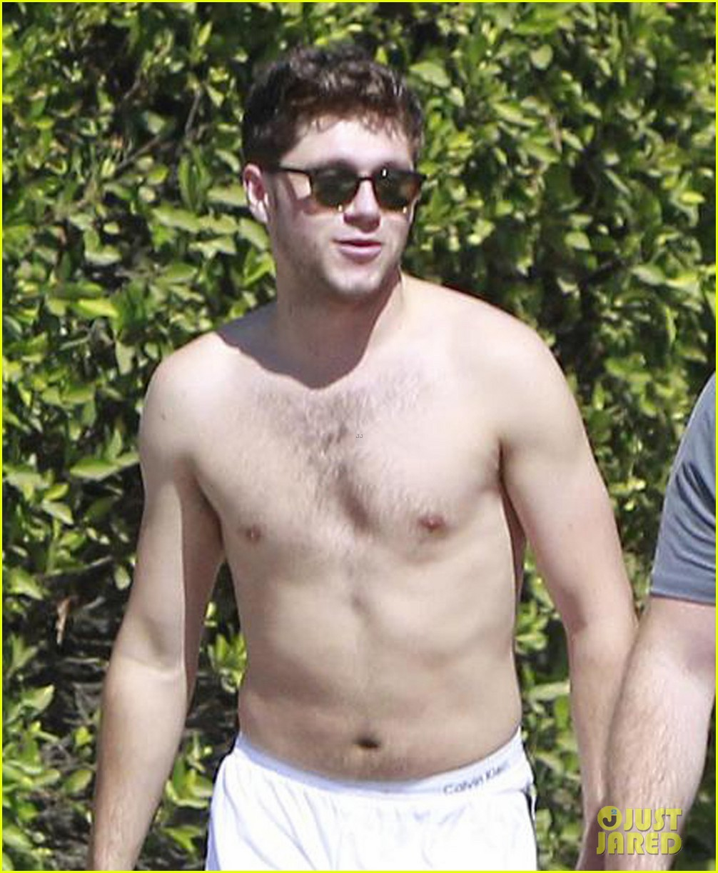 niall horan goes for shirtless hike at las runyon canyon 09