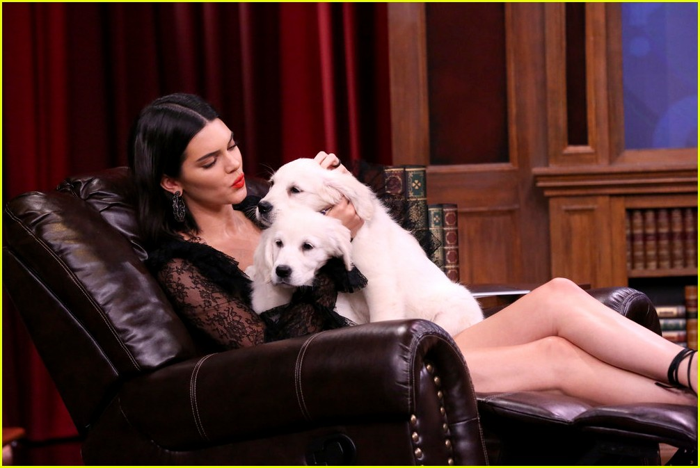 kendall jenner cuddles with puppies on tonight show 02